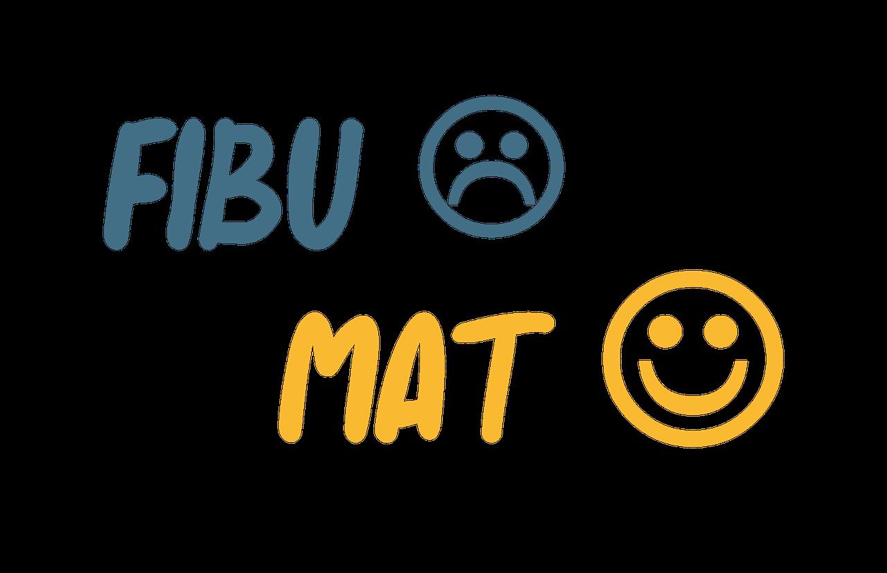 Automatisierte Buchhaltung Fibumat Online